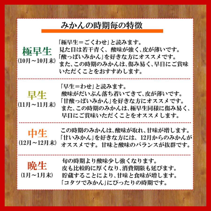 山川みかん 絶品蜜柑(ミカン) いいもの【あるファーム】九州