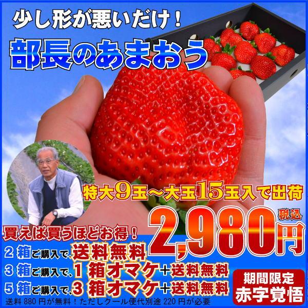 部長のあまおう,苺,いちご,イチゴ,あまおう,甘王,イチゴ