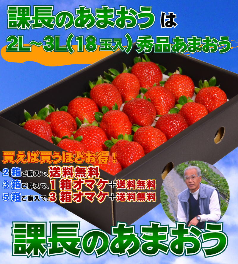 苺,いちご,イチゴ,あまおう,甘王,イチゴ,いいもの【あるファーム】九州